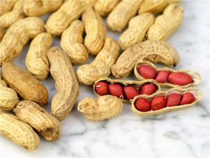 Image of Peanut Seeds